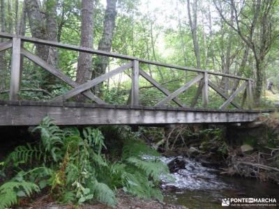 Bierzo lugar de Naturaleza;caminos y senderos rutas por irati cavalls al vent madrid puente diciembr